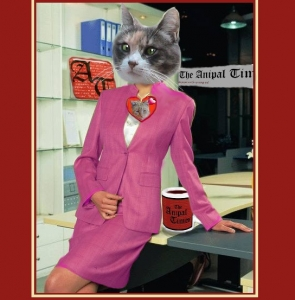 cat in business suit